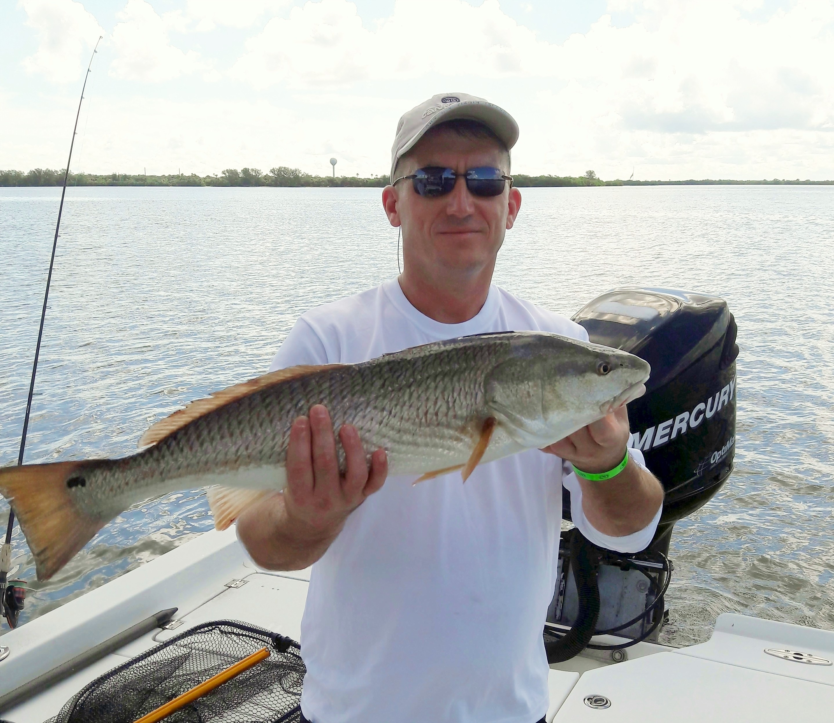 November 2016 fishing report tampa bay tampa fishing guides for Tampa fishing outfitters